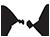 Associazione Liutaria Italiana Logo