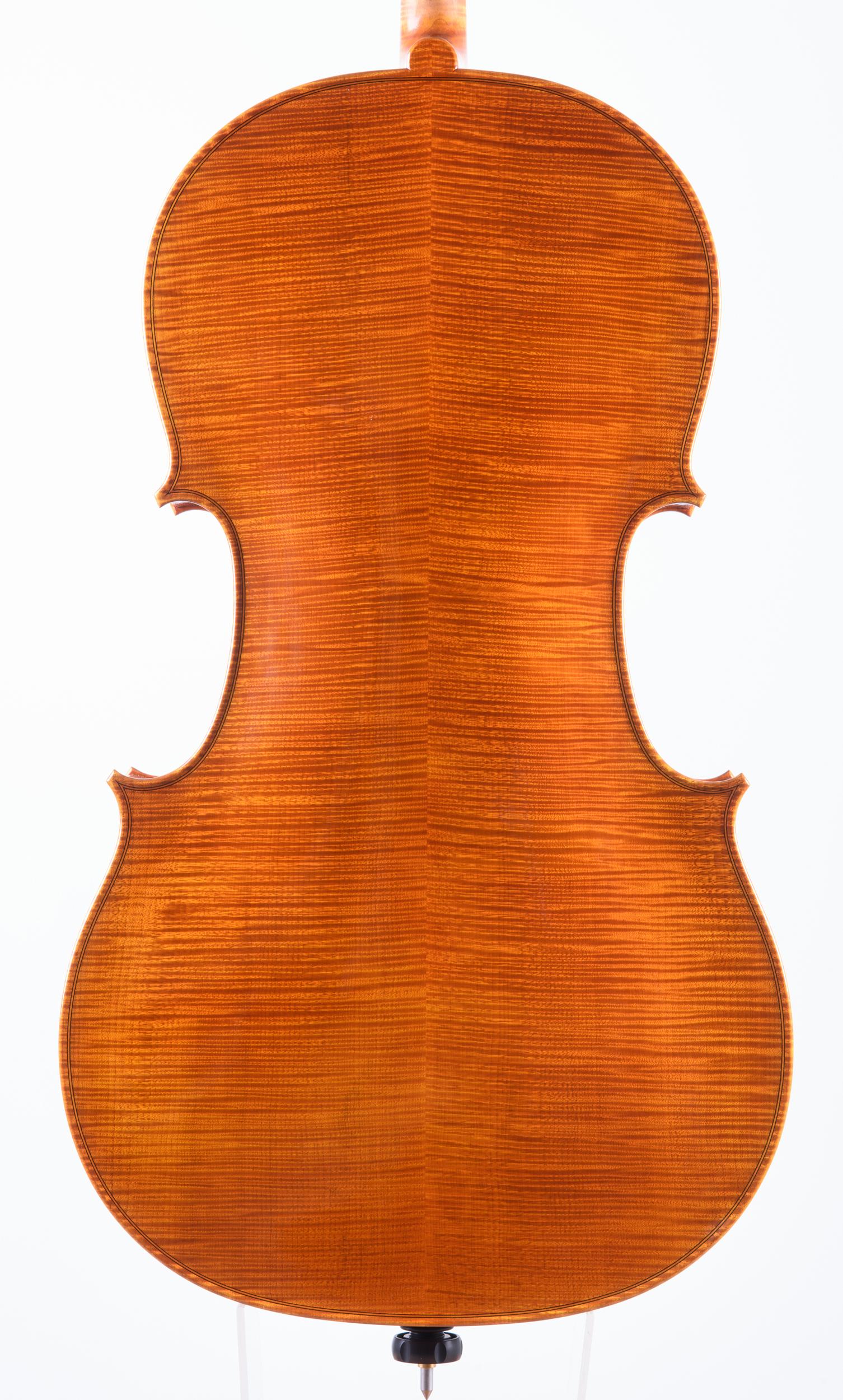 Dario Segala Cello Fondo