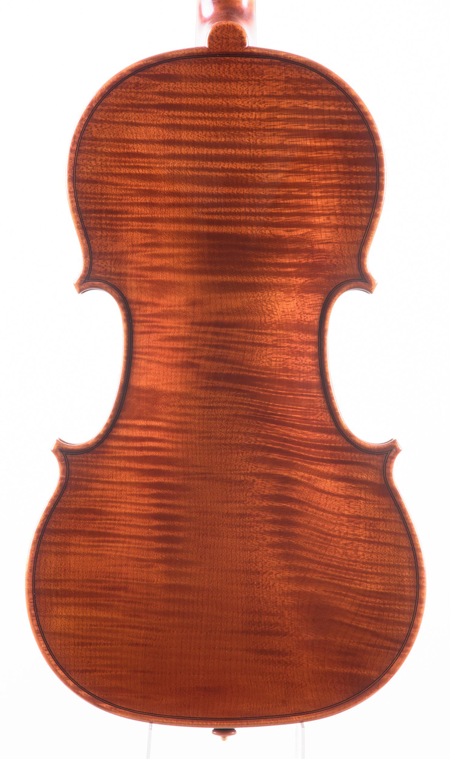 Dario Segala violino fondo