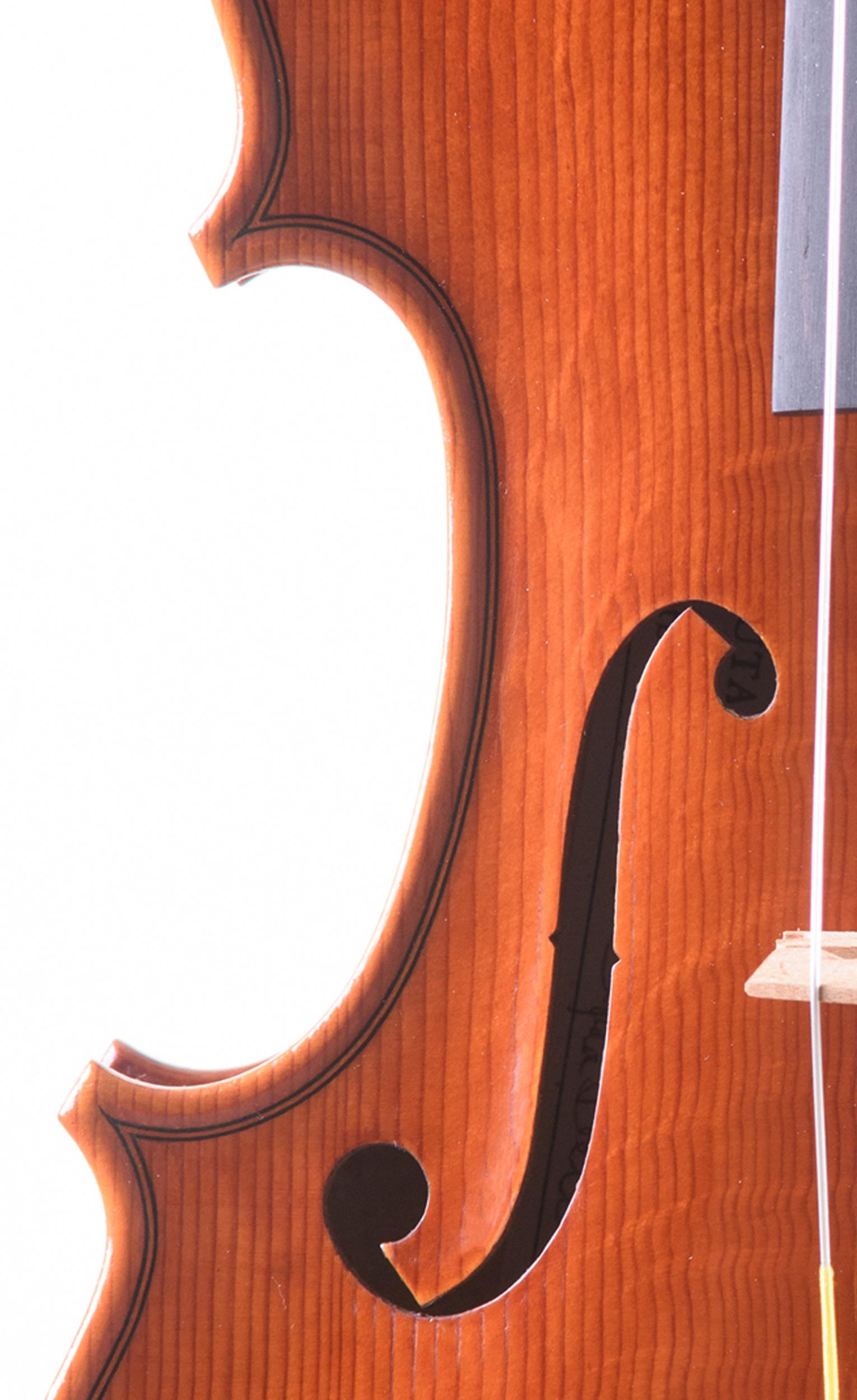 Dario Segala violino effe