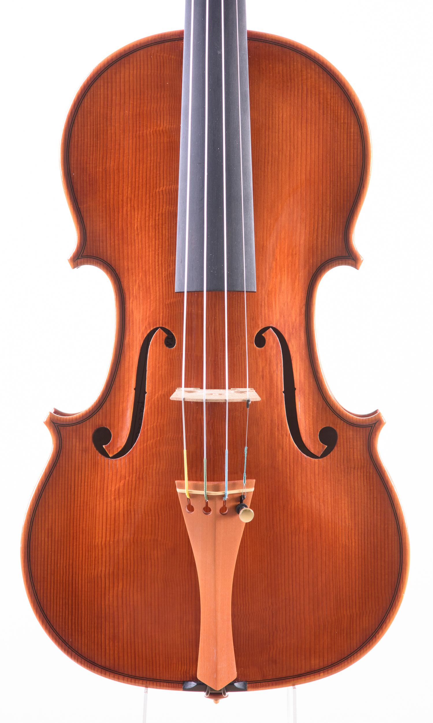 Dario Segala violino tavola